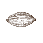 Cabosse-png.png