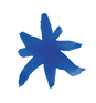 RED STAR 2 - BLUE.png