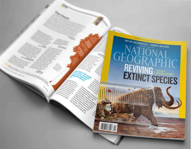 Editorial Illustration, National Geographic
