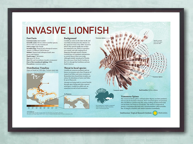 Poster design and illustration, Smithsonian Tropical Research Institute