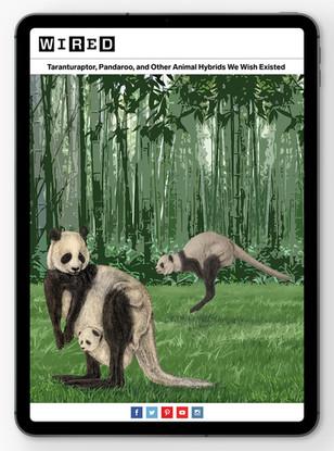 Pandaroos