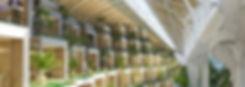Tour-Taxis-belgium-Vincent-Callebaut-16-