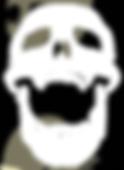 Skull emblem.png