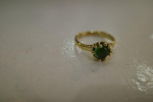 HARICOT(緑)
