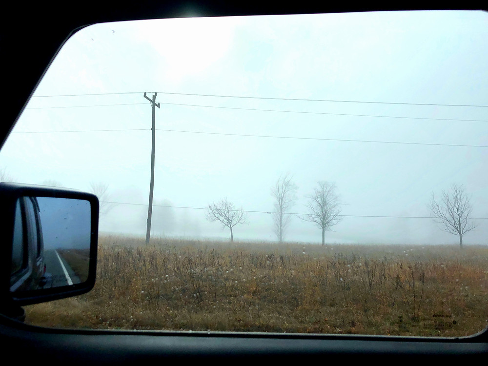 Taken through a passenger side car window, In the distance are a few bare trees, bare fields and a telephone pole and wire running from one side of the picture to another