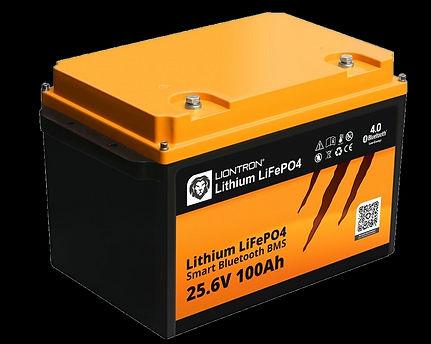 Liontron Batterie.jpg