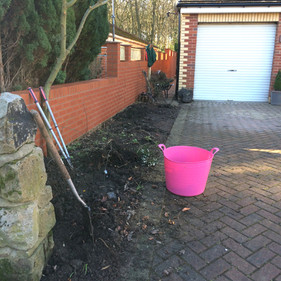 Front Driveway Border BEFORE