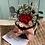 Thumbnail: Bombonera de rosas preservadas Amore