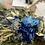Thumbnail: Réplica L ramo Blue Victoria