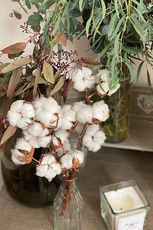 Jarrón Olafi de flor de algodón