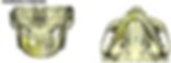 Matérialise modélisation péroné ORL Pontoise