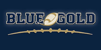 blue and gold football.jpg