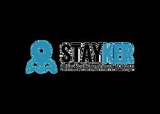 Stayker Black Transparent.png