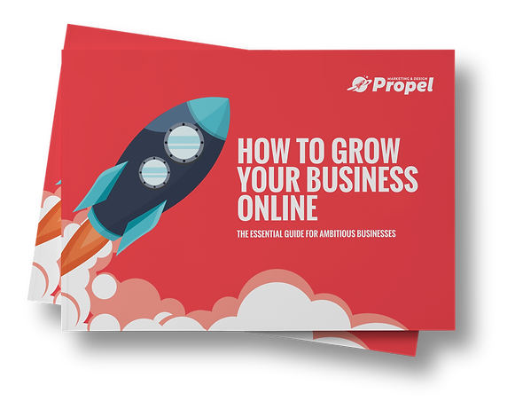 HOW TO GROW YOUR BUSINESS ONLINE book co
