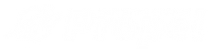 Propel Logo White out.png