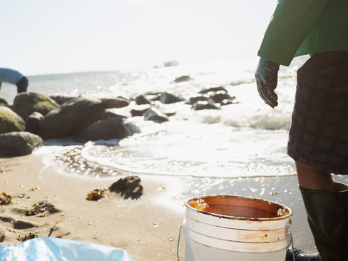 Is your favorite California beach polluted?