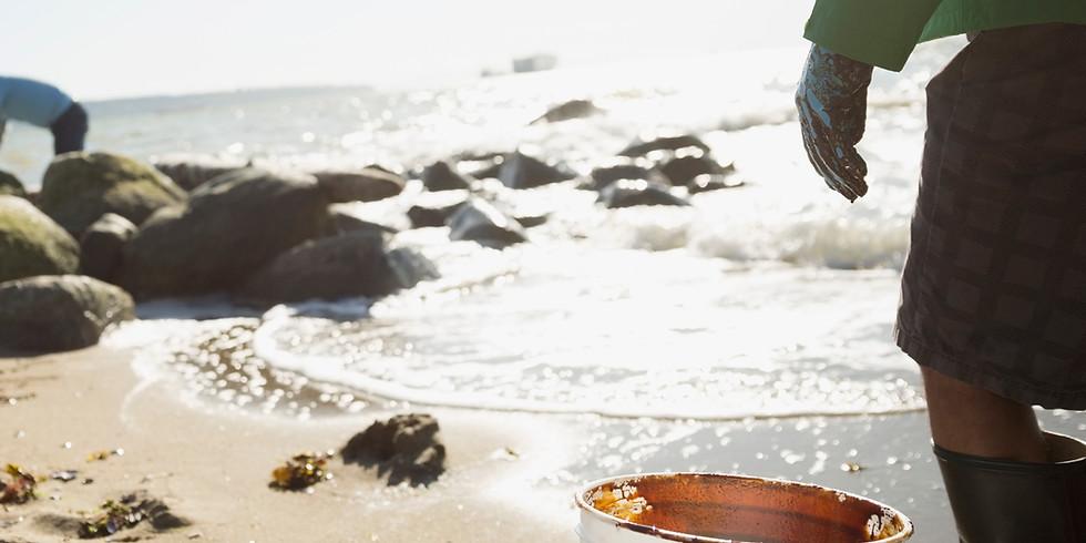 Global Beach Cleanup