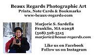 NEW Marjorie at Stony Brook Alt copy 2.j