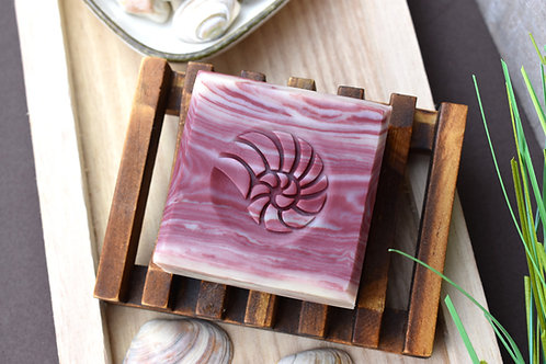 "3D Shell Soap Stamp - 1.57"" (40mm) diameter"