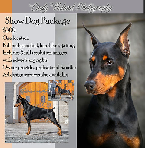 CNP-Pricing-ShowDog2019.jpg
