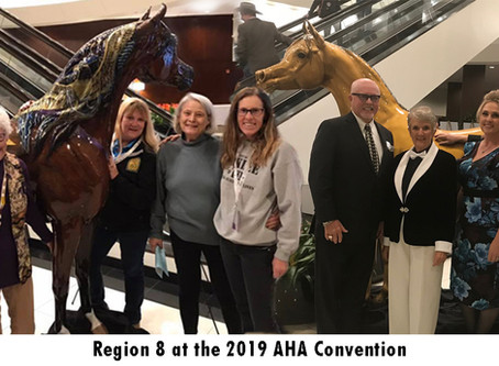 News from the 2019 AHA Convention