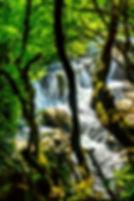 Мартвильский каньон