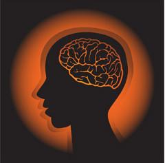 ミニカフェ 脳の話 Talk of the Brain