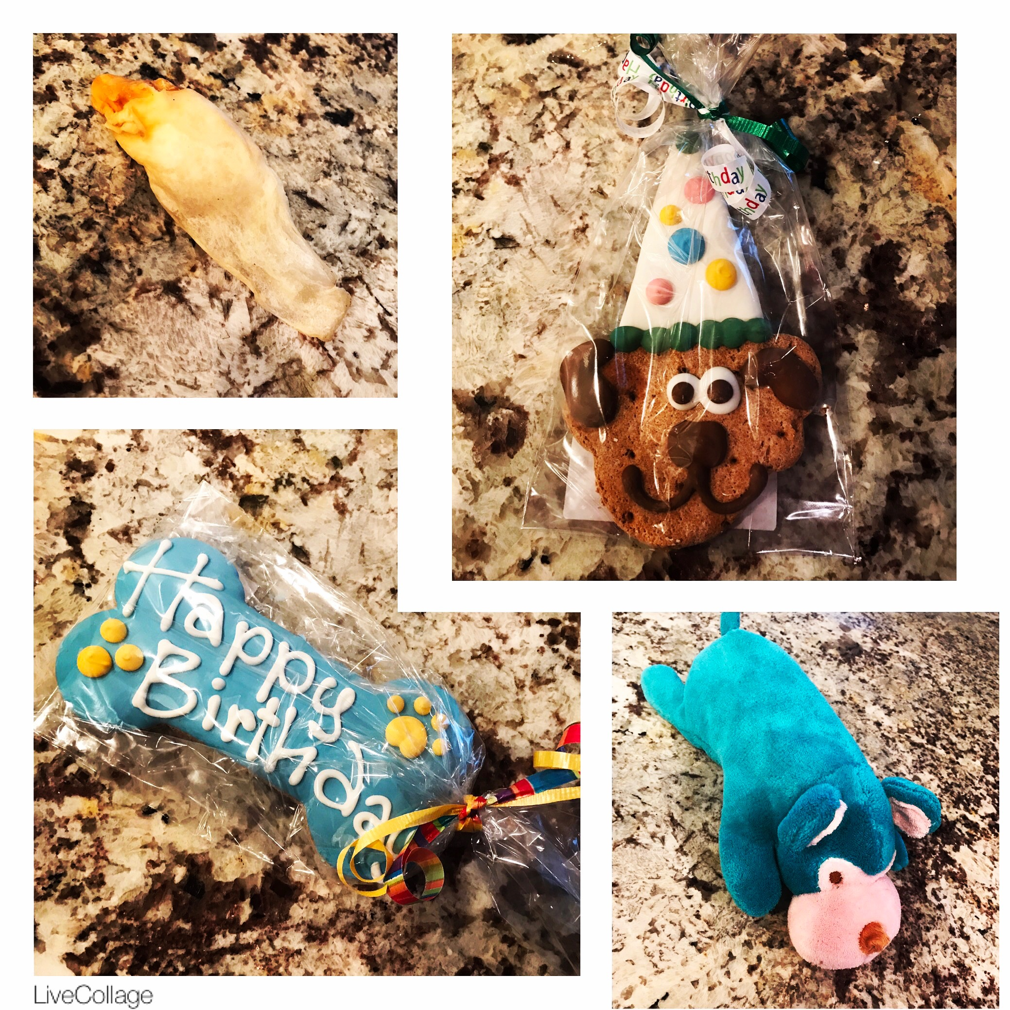 dog birthday presents dogs love treats and toys and happy birthday cookies