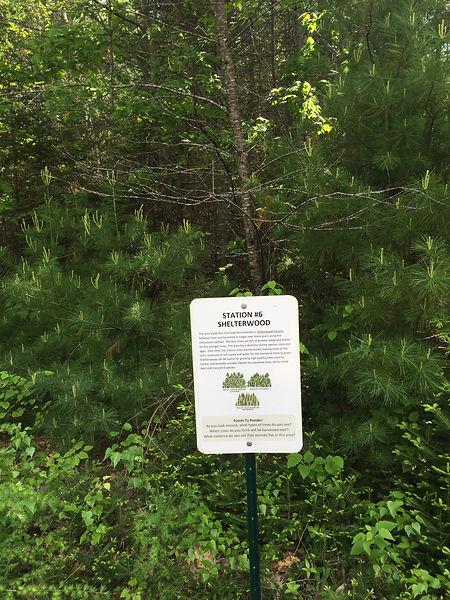 shelterwoodsign.JPG