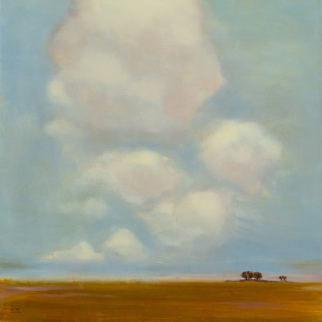 Cotton Clouds and Fields of Gold