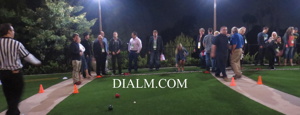 Bocce Ball Team Building Event #DIALM.jp