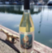 bottle with glass shadow.jpg
