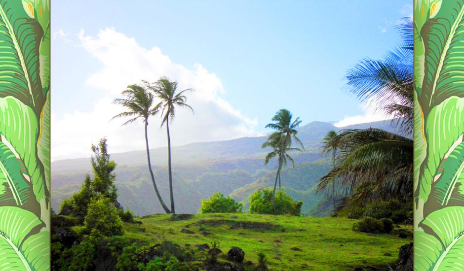 hawaii-49.JPG