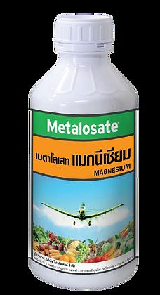 เมตาโลเสทแมกนีเซียม