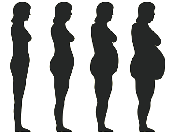 4 silhouette ladies each one getting fatter