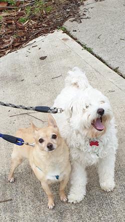 MARLEY & HIRO.jpg