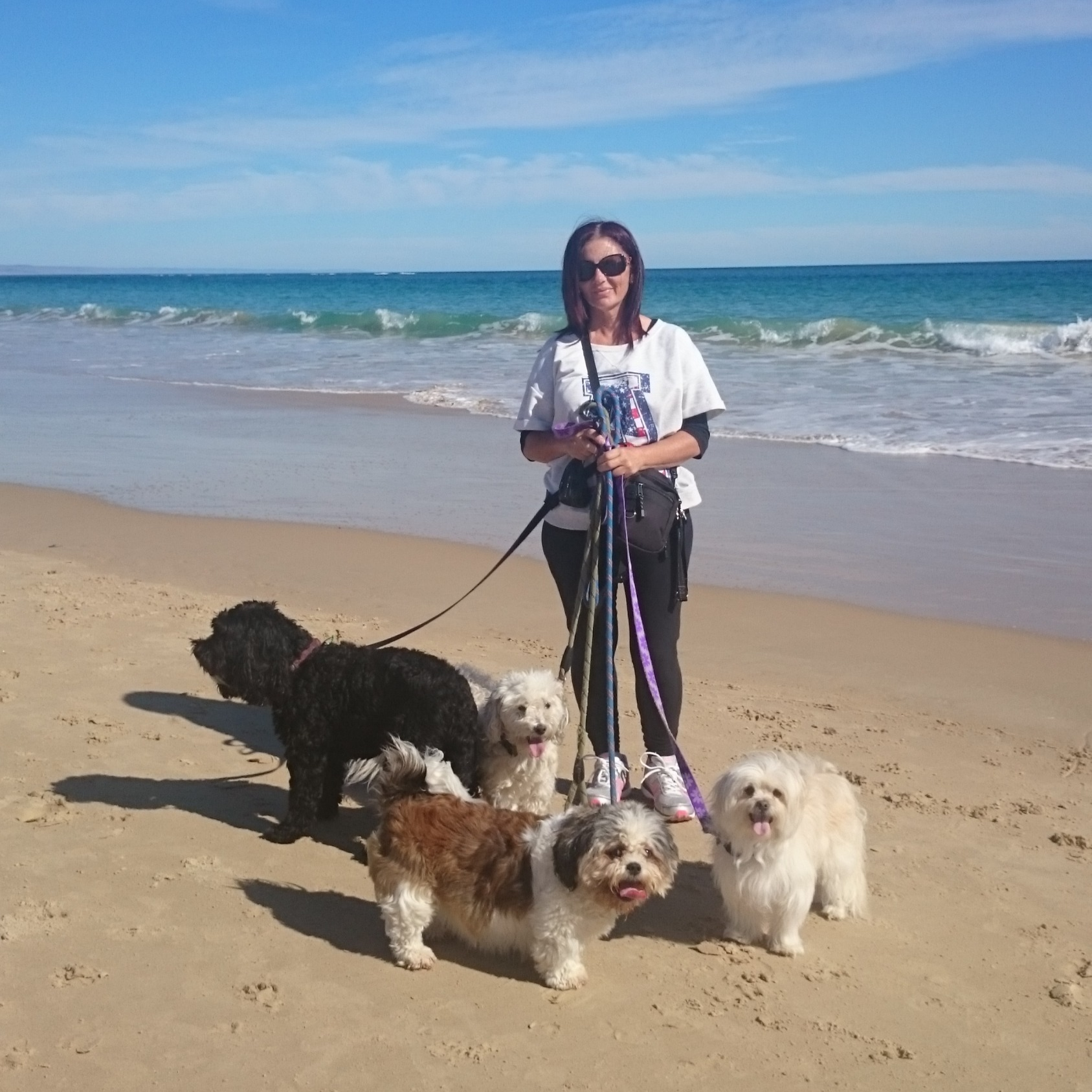 Beach walk with my 2 & a couple of extras, Crumpet & Cody (both sadly now at the Rainbow Bridge)
