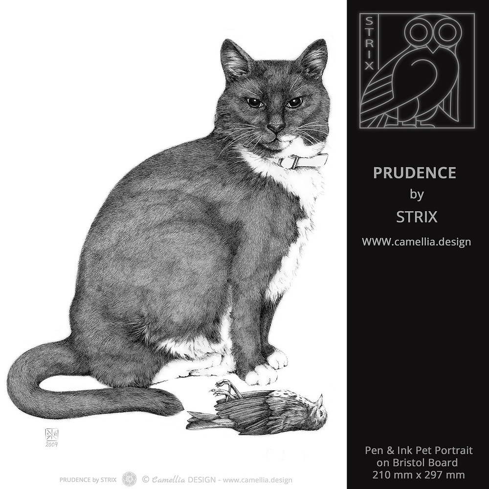 PRUDENCE | Pen and Ink Cat Portrait by STRIX