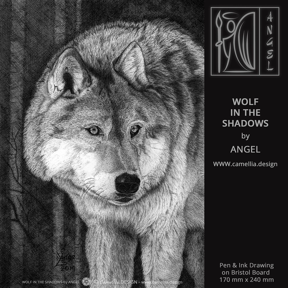 WOLF IN THE SHADOWS | Pen and ink drawing by ANGEL