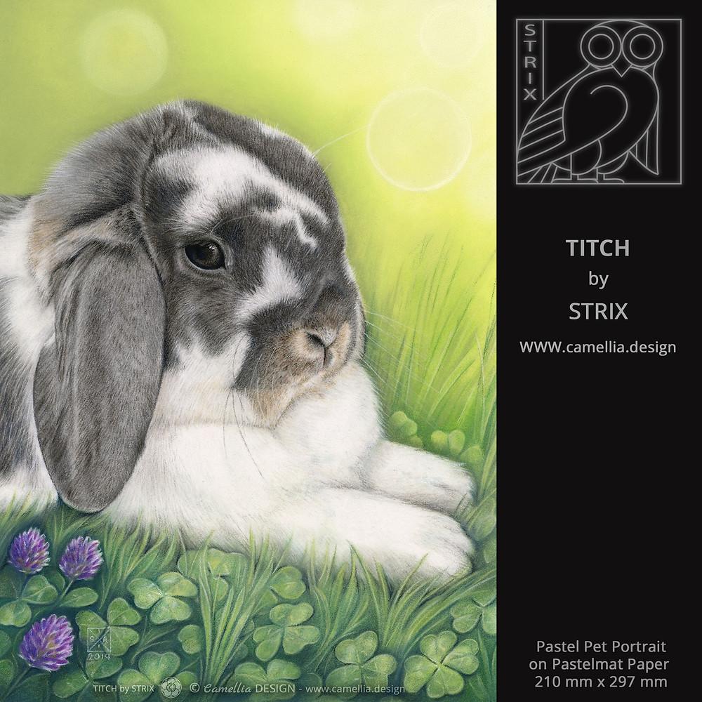 TITCH | rabbit pastel pet portrait | artist STRIX