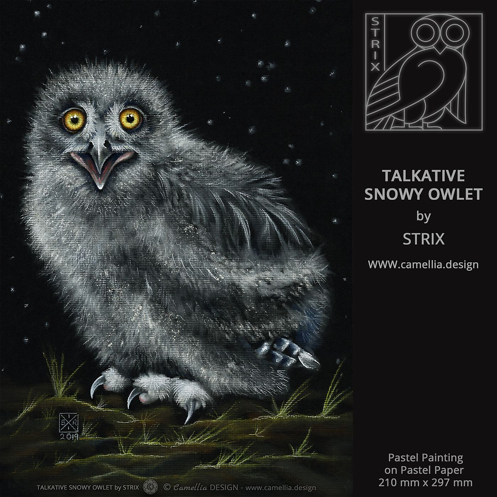 TALKATIVE SNOWY OWLET | Pastel Painting by STRIX