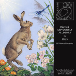 HARE & DRAGONFLY ALLEGORY