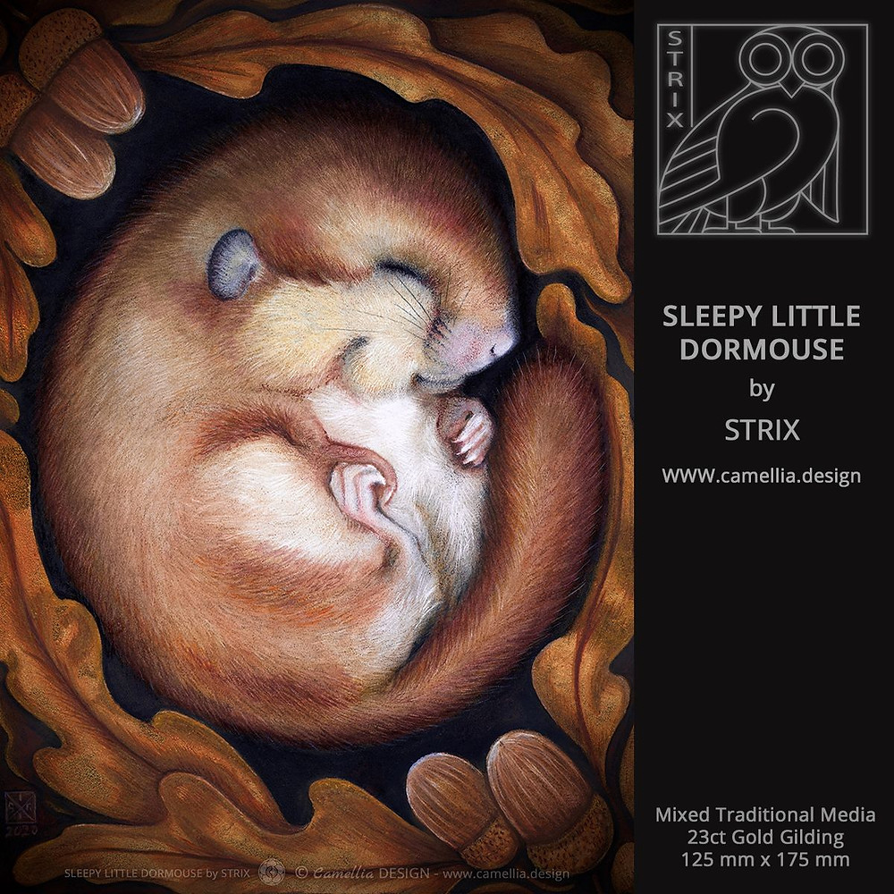SLEEPY LITTLE DORMOUSE | Painting by STRIX | Free download