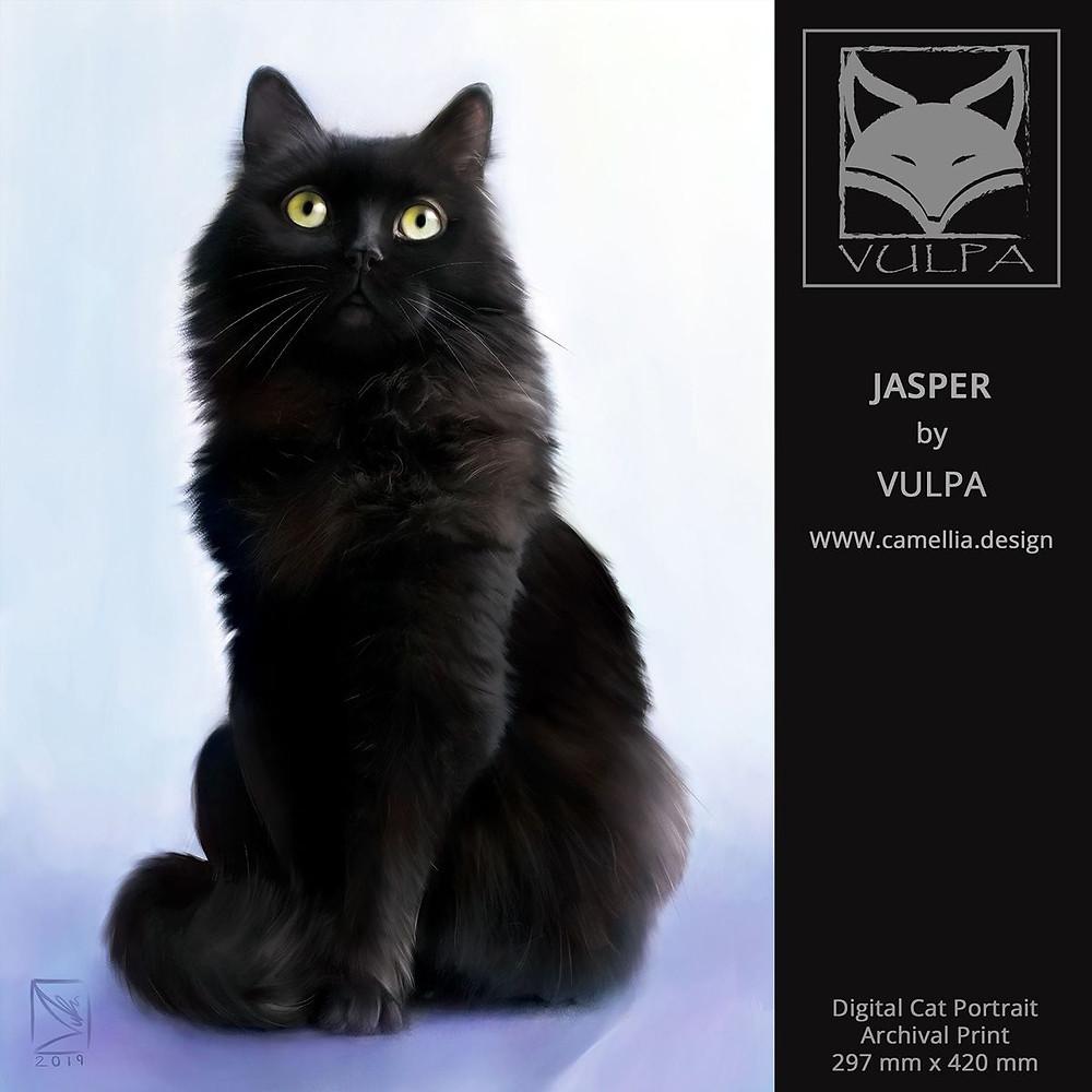 JASPER | Digital cat pet portrait | artist VULPA