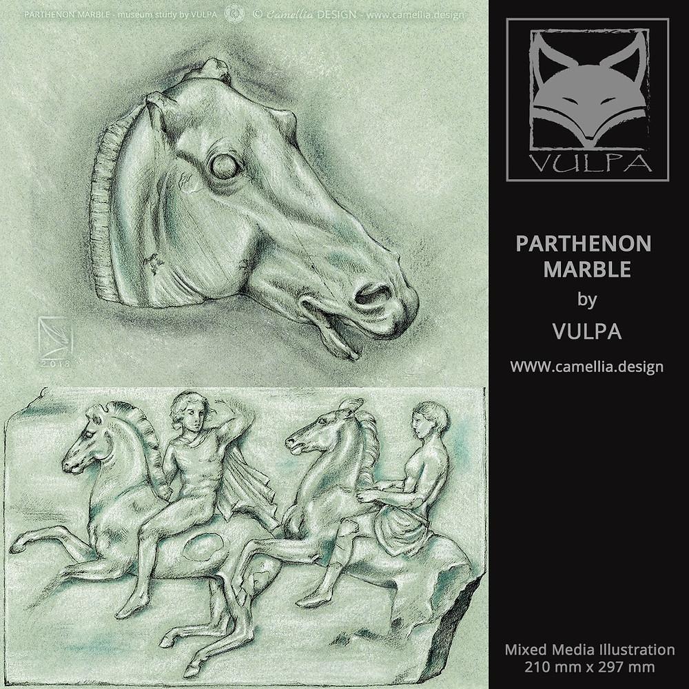 PARTHENON MARBLE STUDY | sketch by VULPA