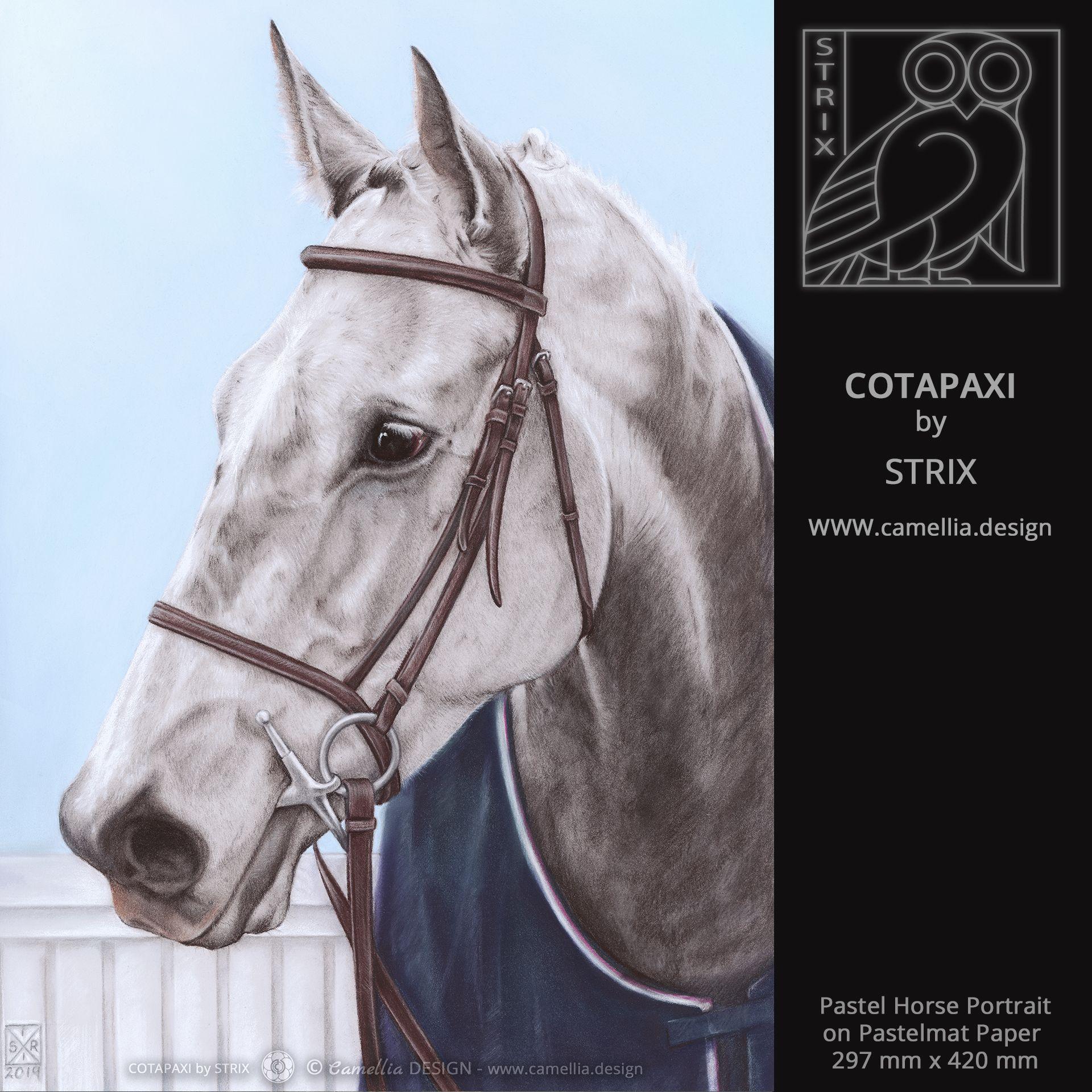 COTAPAXI
