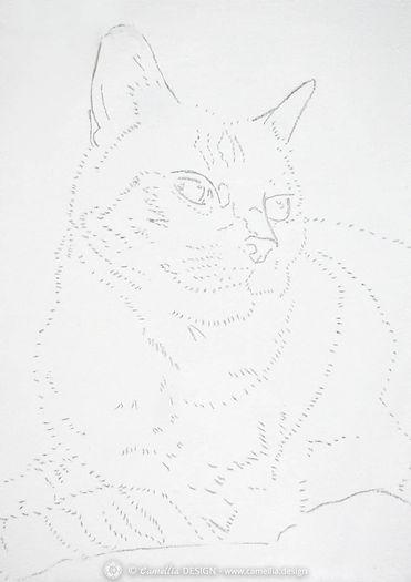 LYNK-cat-oil-painting-stage-1.jpg