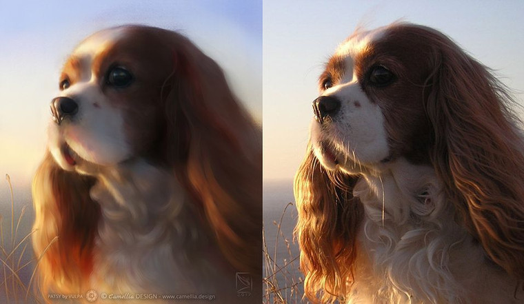 PATSY-Digital-pet-portrait-guide-by-VULP