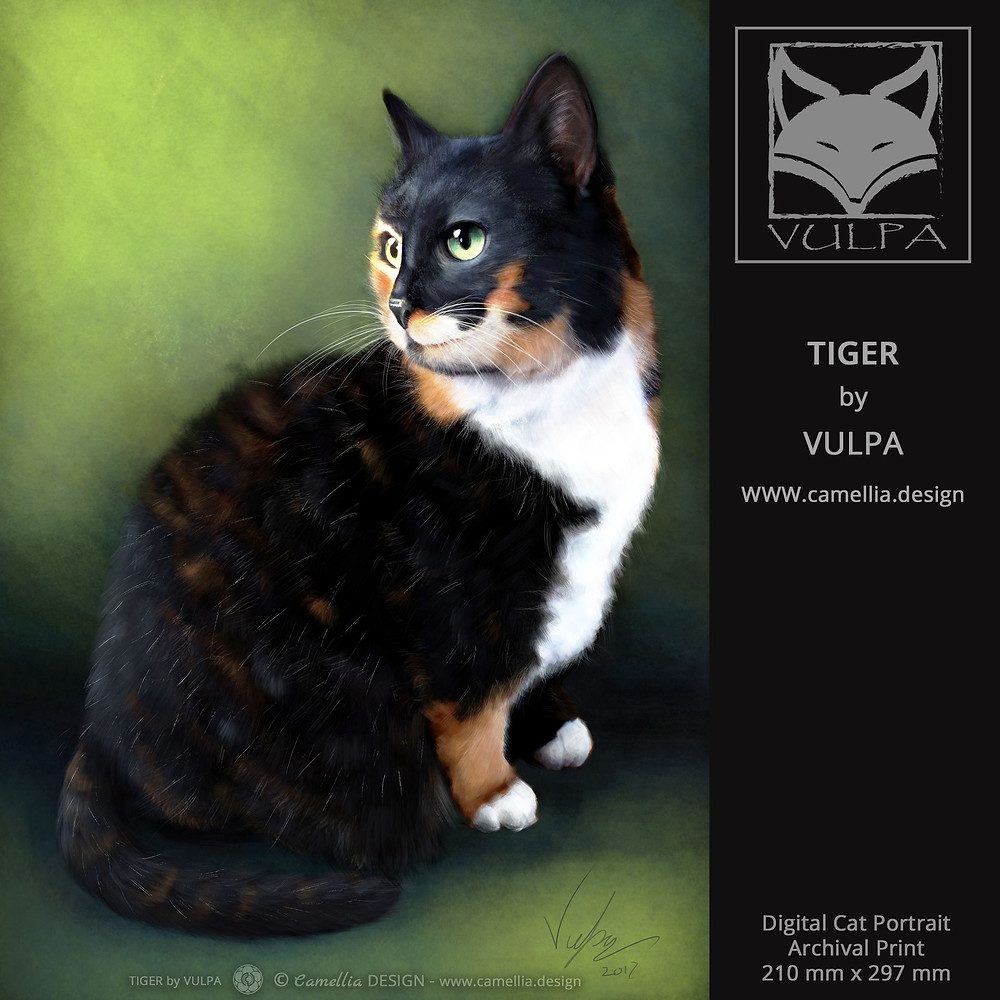 TIGER | digital cat pet portrait | artist VULPA