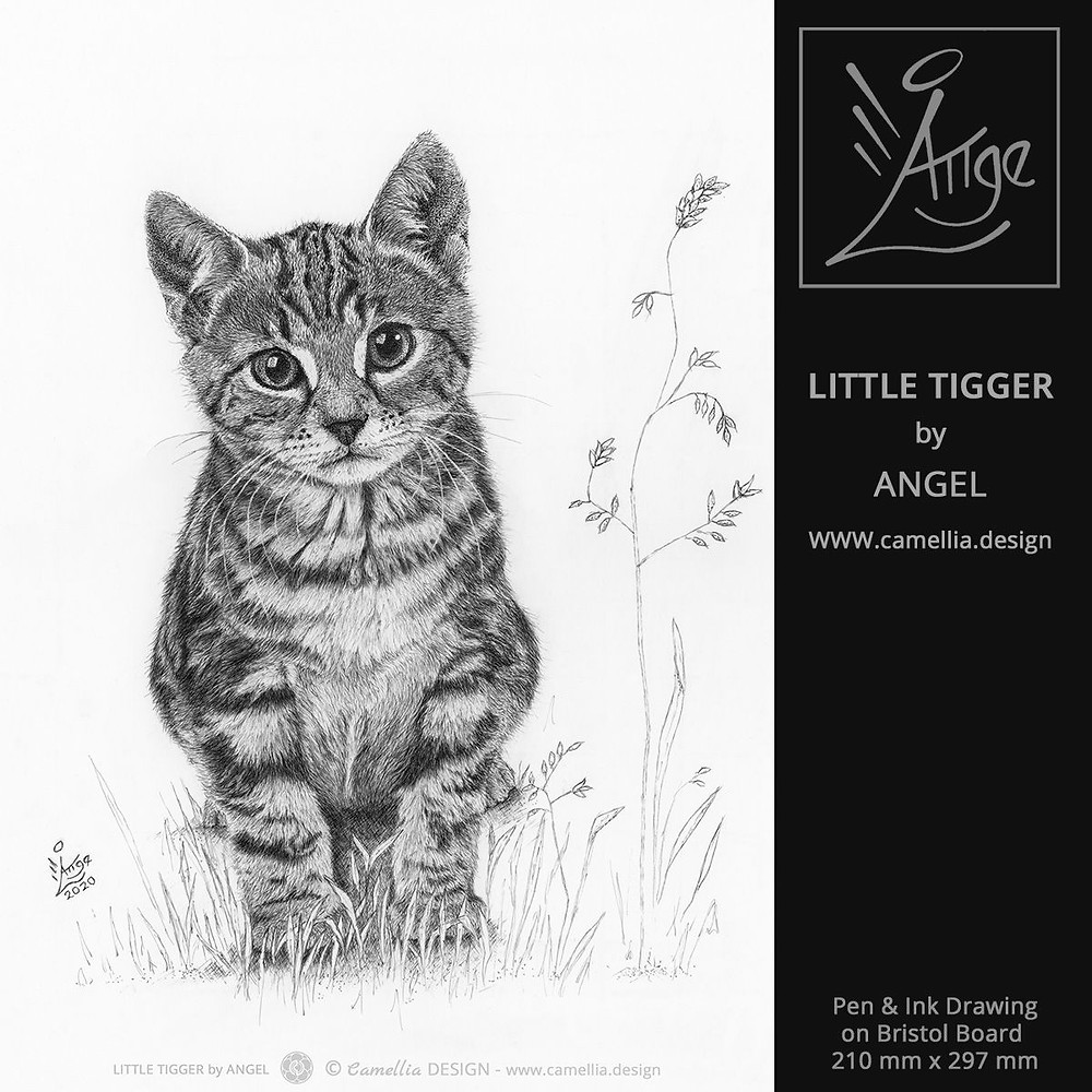 LITTLE TIGGER | cat portrait by ANGEL